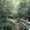 Footpath to Fowley Lane
