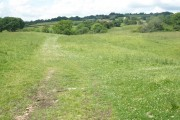 Grassland, near Blindmoor