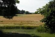 Farmland near Poslingford