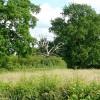 Farmland near Burghfield Place