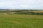 Barley field, Keirsbeath