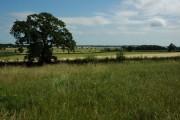 Farmland to the east of Bladon