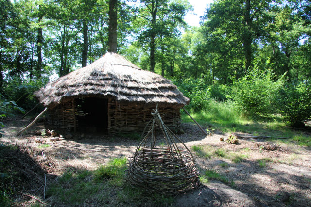 'Iron Age' roundhouse in Rede Wood
