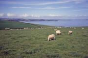 Farmland near Pabyer Point