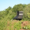 Risley Moss Observation Tower