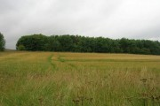 Farmland, Ganton Brow