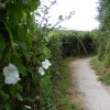 Footpath No 54 from New Mill to Little Tring