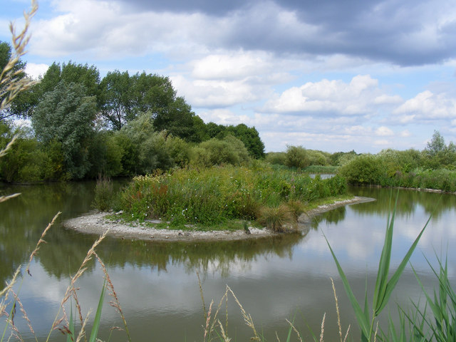 The bird reserve adjacent to Tring Sewage Works - the island