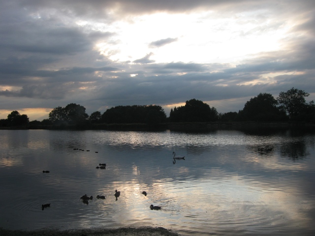 Dusk and Ducks at Tringford Reservoir