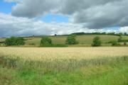 Farmland North West of Fimber