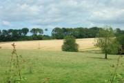 Farmland North of Sledmere