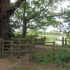Kissing Gate by Allotments, Bookham Common