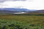 Between Loch Tarbert and the road