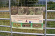 Managed woodland at Applecross