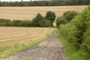 Track and fields near Hunts Park Farm