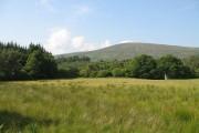Farmland in Glen Spean