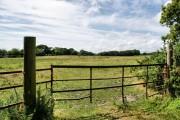 Farmland south of Lisle Court