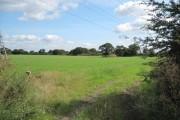 Farmland near Whitby