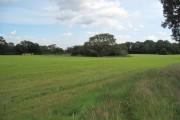 Farmland near Croughton