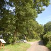 Capler Wood picnic site