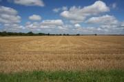 Farmland north of Feltwell