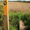 Footpath Indicator