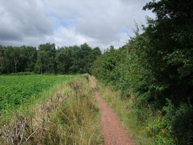 Robin Hood Way heading west towards Hazel Gap