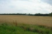 Farmland, Grimston