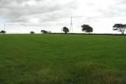 Grassland by Langmuir of Auchengree