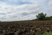 Newly ploughed field by Eastwick Road
