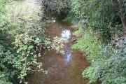 River Leadon, upstream, Bosbury