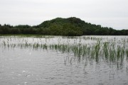 Promontory on Loch Coille-Bharr