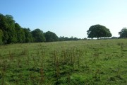 Farmland East of Bainton