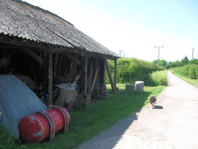 Shed adjacent to Marshcroft Lane, Tring