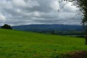 Y Mynyddoedd Duon / The Black Mountains