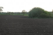 Small pond in a ploughed field