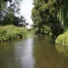 Looking upstream