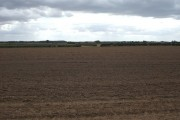 Farmland near Catwick