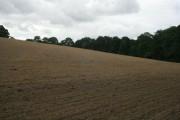 Recently tilled fields