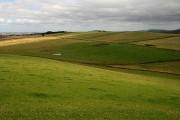 Farmland at The Kip
