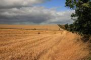 Farmland near Graden Moor