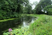 Forth and Clyde Canal near Cadder