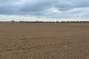Middle Field, near Mappleton