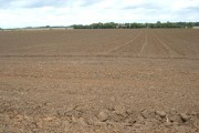 Farmland near Withernwick Grange