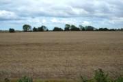 Farmland near New Ellerby