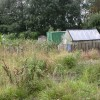 Harpurhey, allotments