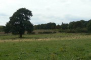 Fields near Bramcote