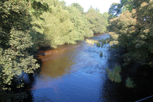 Afon Banwy in September