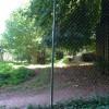Paignton : Paignton Zoo, Asiatic Lion Enclosure