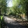 Paignton : Paignton Zoo, Footpath & Lake